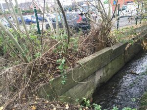 Damage to river defence wall by protruding trees